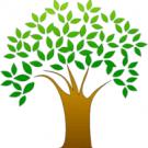 Barnhardt Landscape , Lawn Care Services, Landscape Design, Landscaping, Rockwell, North Carolina