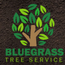 Bluegrass Tree Service, LLC, Tree Trimming Services, Tree Removal, Shrub and Tree Services, Florence, Kentucky