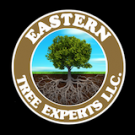 Eastern Tree Experts LLC, Tree & Stump Removal, Shrub and Tree Services, Tree Service, Guilford, Connecticut