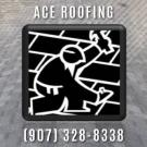 ACE Roofing, LLC, Window Installation, Roofing, Roofing Contractors, North Pole, Alaska
