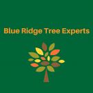 Blue Ridge Tree Experts, Tree Trimming Services, Tree Service, Tree Removal, Fredericksburg, Virginia