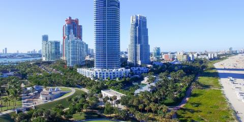 Why Is Tree Preservation Important in Miami, Florida?, ,