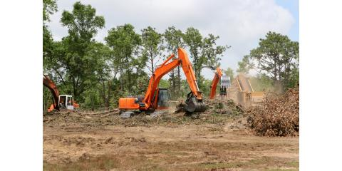 The Importance of Land Clearing, ,