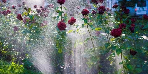 3 Steps to Measure Your Sprinkler System's Water Usage, Waterford, Connecticut