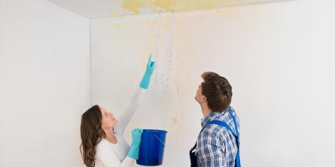 3 Early Signs Your House Could Have a Mold Problem, Clarksburg, Maryland