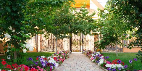 3 Late Summer Landscaping Tips for Your Trees, York, South Carolina