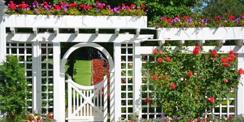 3 Plants That Are Perfect for Your Trellis, Texarkana, Texas