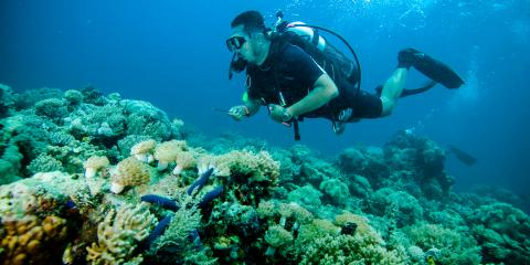 3 Fun Facts About Scuba Diving, Rochester, New York