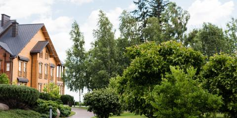 A Useful Guide to Tree Pruning, Anchorage, Alaska